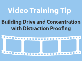 Training tips - Building drive and concentration