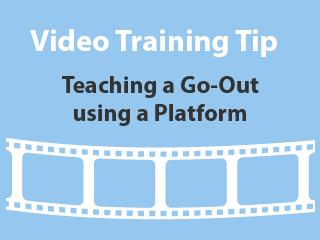 training-tips-platform