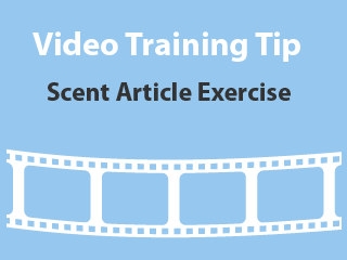 training-tip-scent-article