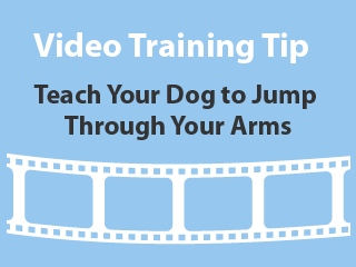 training-tip-jump through your arms