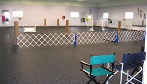 Dog Training Facility - the Mighty Hall - 4000 square feet of Matted Goodness