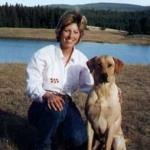 Labrador Retriever Puppy Gunner