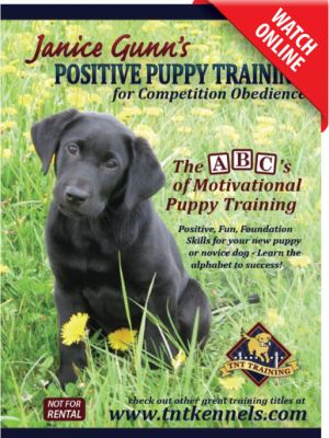 Positive Puppy Training by Janice Gunn