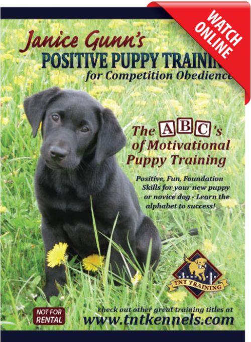 Positive Puppy Training by Janice Gunn