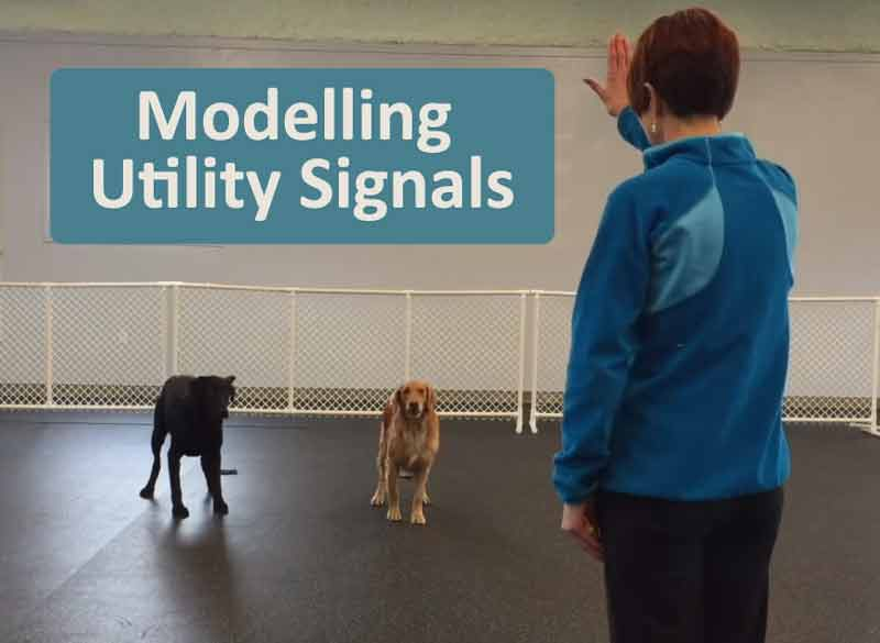modelling utility signals - video training tip