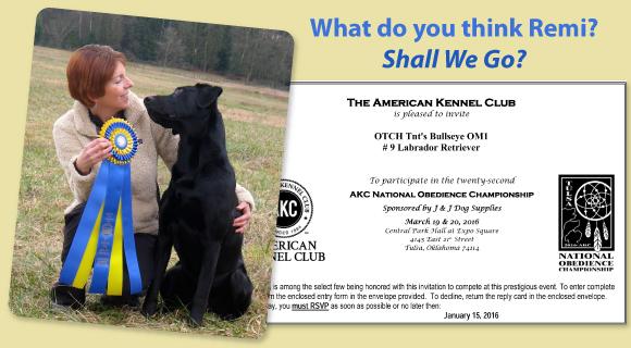 AKC National Invitation