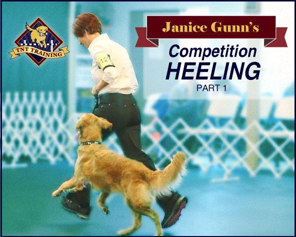 Janice Gunn's Competition Heeling - Part 1