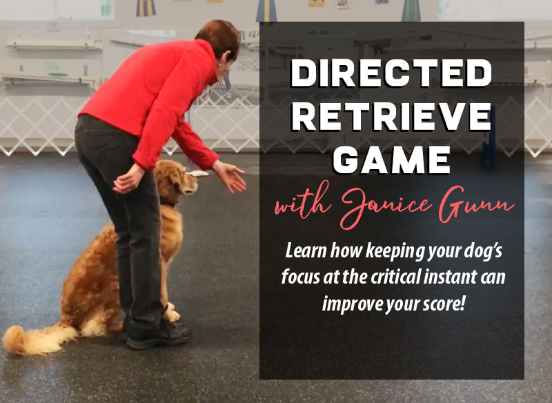 directed retrieve exercise