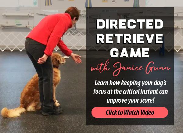 directed-retrieve