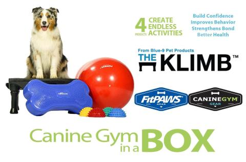 canine conditioning equipment