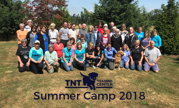 obedience summer-camp-2018
