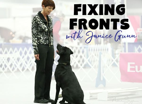 fixing fronts with Janice Gunn