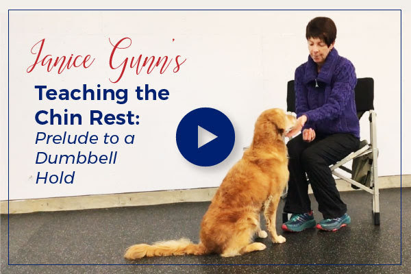 Teaching a Chin Rest: Prelude to Dumbbell Hold with Janice Gunn