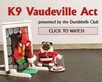 Canine Vaudeville Act