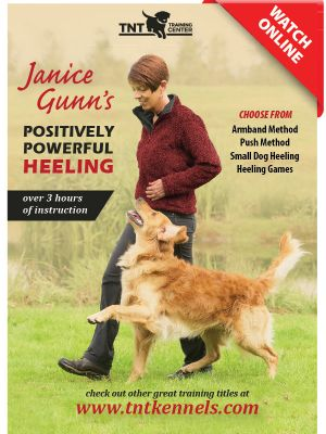 Positively Powerful Heeling by Janice Gunn