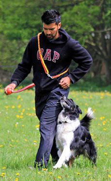 Kamal with Border Collie