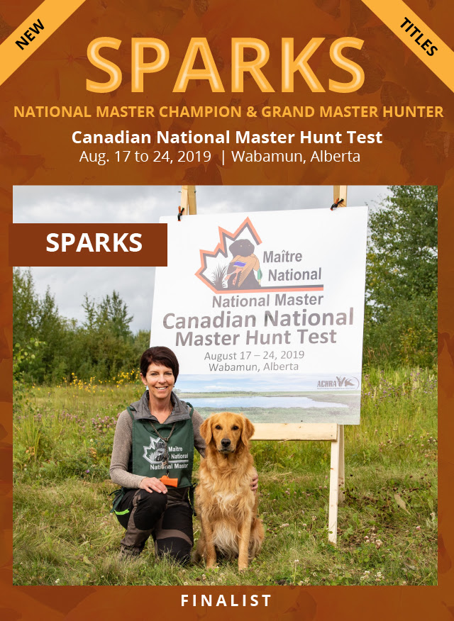 Sparks National Master Champion & Grand Master Hunter