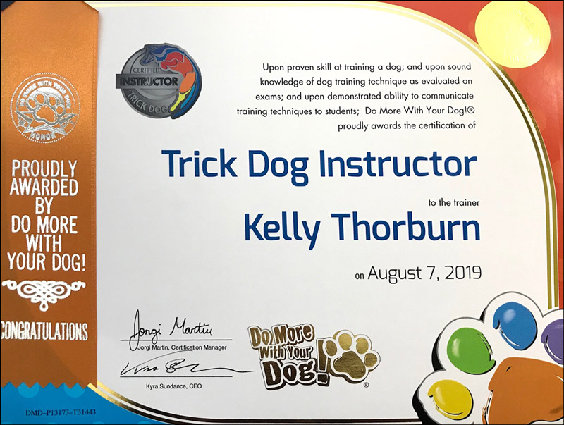 Tricks Dog Instructor Certificate for Kelly Thorburn