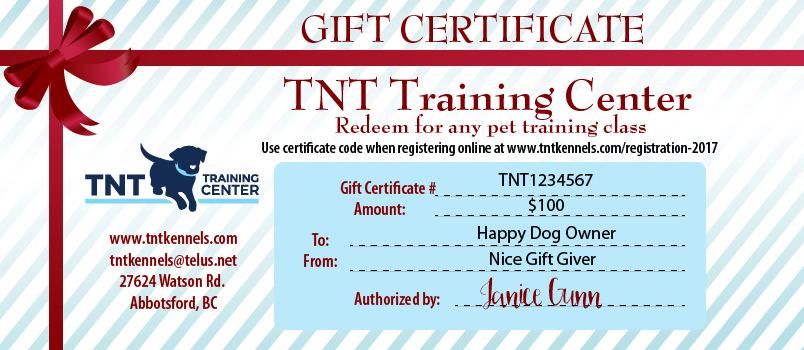TNT Training Dog Training Class - Gift Certificate