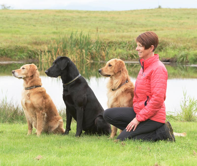 dog trainer Janice Gunn with three of her retrievers - Pounce, Remi and Sparks