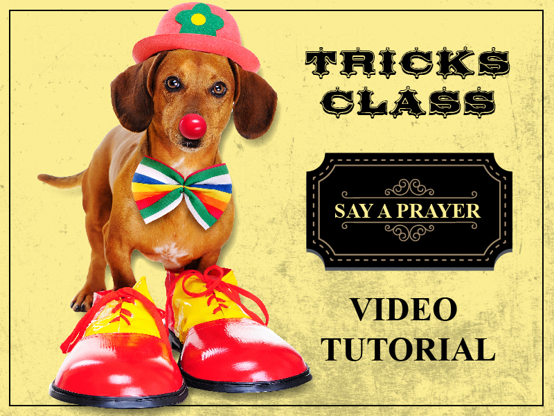 Teach you dog to say a prayer